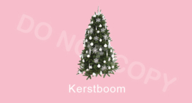 Kerstboom - T-M/TV