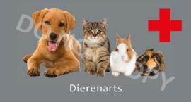 Dierenarts - (B)T/V