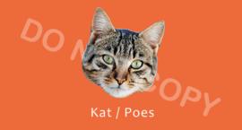 Kat / Poes - T/V