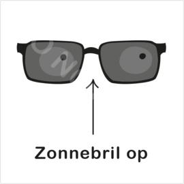 ZW/W - Zonnebril op