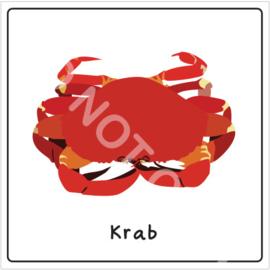 Vis - Krab