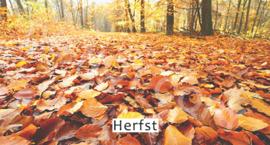 Herfst - T&V