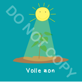 Volle zon (act.)