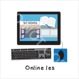 Online les (S)