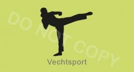 Vechtsport - J