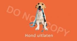 Hond uitlaten - T/V