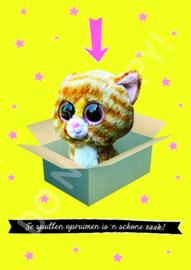 Speelgoed opruimen - TVM