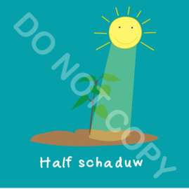 Half schaduw (act.)