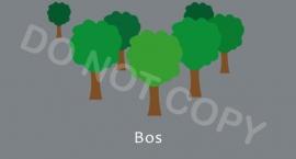 Bos - T/V