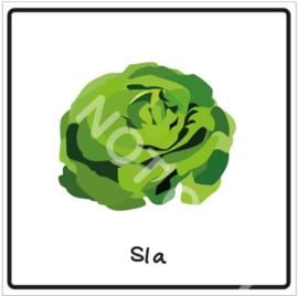 Groente - Sla (Eten)