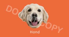 Hond - T/V