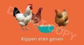 Kippen eten geven - T/V