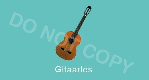 Gitaarles - M