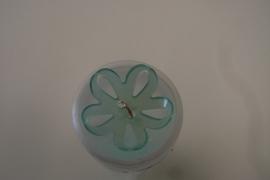 Knoop bloem aqua