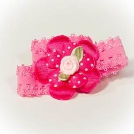 Fuchsia roze bloem met lichtroze roosje