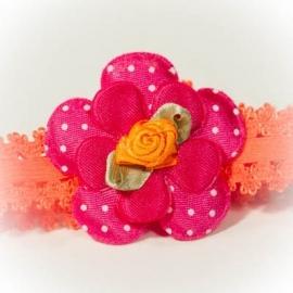 Fuchsia roze bloem met oranje roosje
