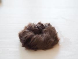 Fluffy bruin