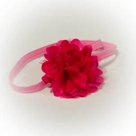 Fuchsia roze bloem