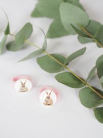 Bunny licht roze