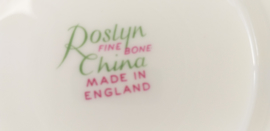 Roslyn China PEACH kop en schotel