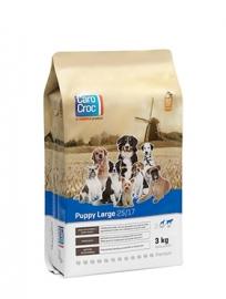 CaroCroc Puppy Large 27/17 zak á 3 KG