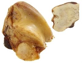 Runder knook met vlees