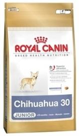 Royal Canin Chihuahua Junior 500 GR
