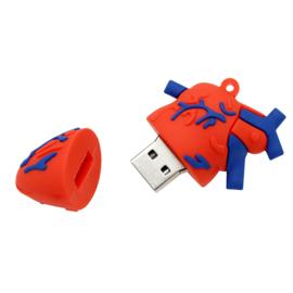 USB Anatomie Hart 16 GB
