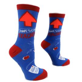 H2C onderwijs sokken - juf of meester AWESOME