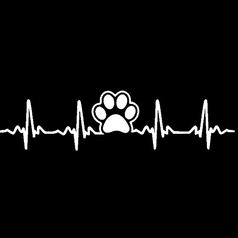 STICKER HEART RATE PAW-  WIT