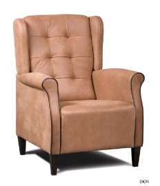 Fauteuil Dion