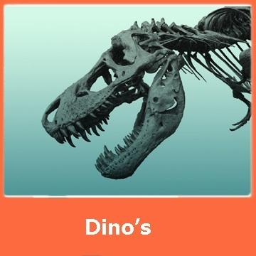 Themakist Dino's NU BESCHIKBAAR