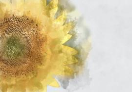 Sunflower- Mint by Michelle Decoupage papier-A3