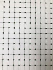 Tegelvel 30 x 45 cm Wit Groen