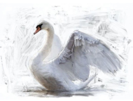 White Swan - Mint by Michelle decoupage papier -A3