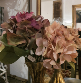 Hortensia (verschillende kleuren)  per stuk