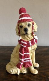 Kleine Golden Retriever Hond 9(b)x 15,5(h)cm