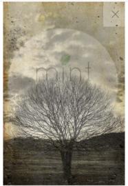 Sepia Tree - Mint by Michelle Decoupage papier-A3