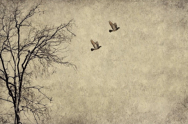 2021 NEW RELEASE Flying birds - Mint by Michelle decoupage -A3