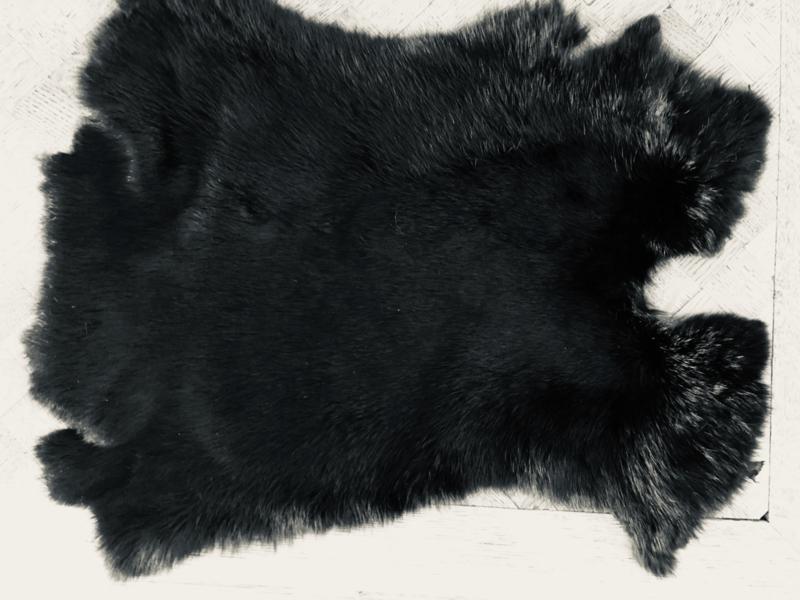 Zwart Konijnen Vel Ca. 43 x 32 cm Print 15 Superkwaliteit
