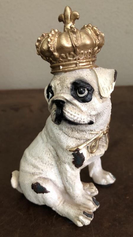 Kleine Bulldog  met kroon 13(h)cm