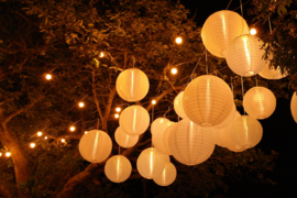 Nylon lampion wit 25 cm