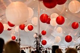 Lampion rood 75 cm