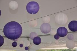 Lampion violett 75 cm
