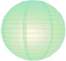 Lampion mint groen 45 cm