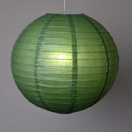 5 x Lampion donker groen 25 cm