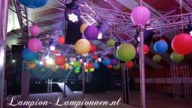 Lampion roze 75 cm