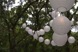 Lampion blanc 35 cm - 10 pièces