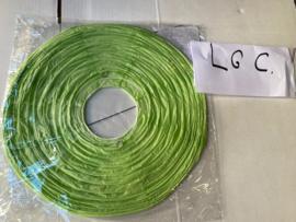 Lampion licht groen C 25 cm (koopjeshoek)