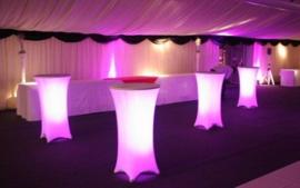 LED decoratie unit 20 cm Multicolor
